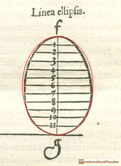 durer and conic sections, ellipses: egg line corrected as an ellipse  | matematicasVisuales
